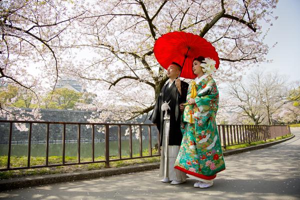 桜のシーズン、大阪城前撮りロケーション承り中